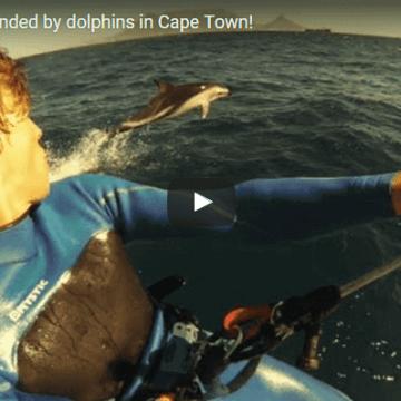 [:es]Navegando con delfines en Cape Town[:]